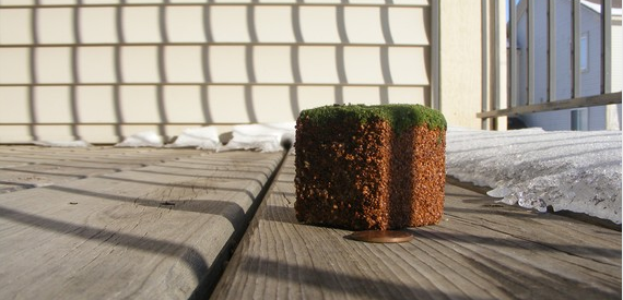 A block of dirt with grass on top, just as in the game Minecraft
